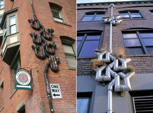 Plant Watering Drainpipes, Seattle