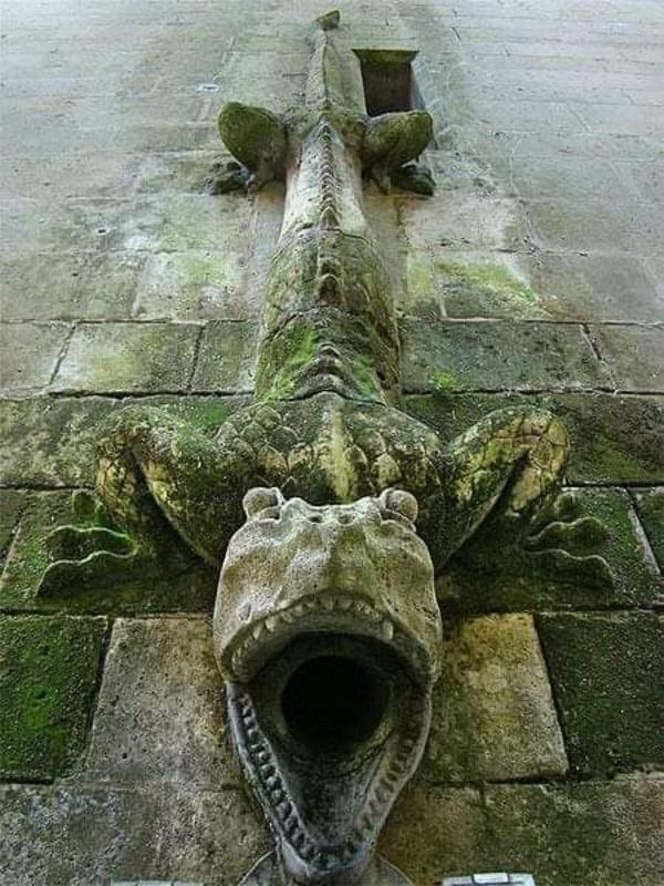 Reptile Drainpipe at Chateau Pierrefonds, France